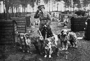 Mrs Richardson And Her Dog Pupils, Ww1