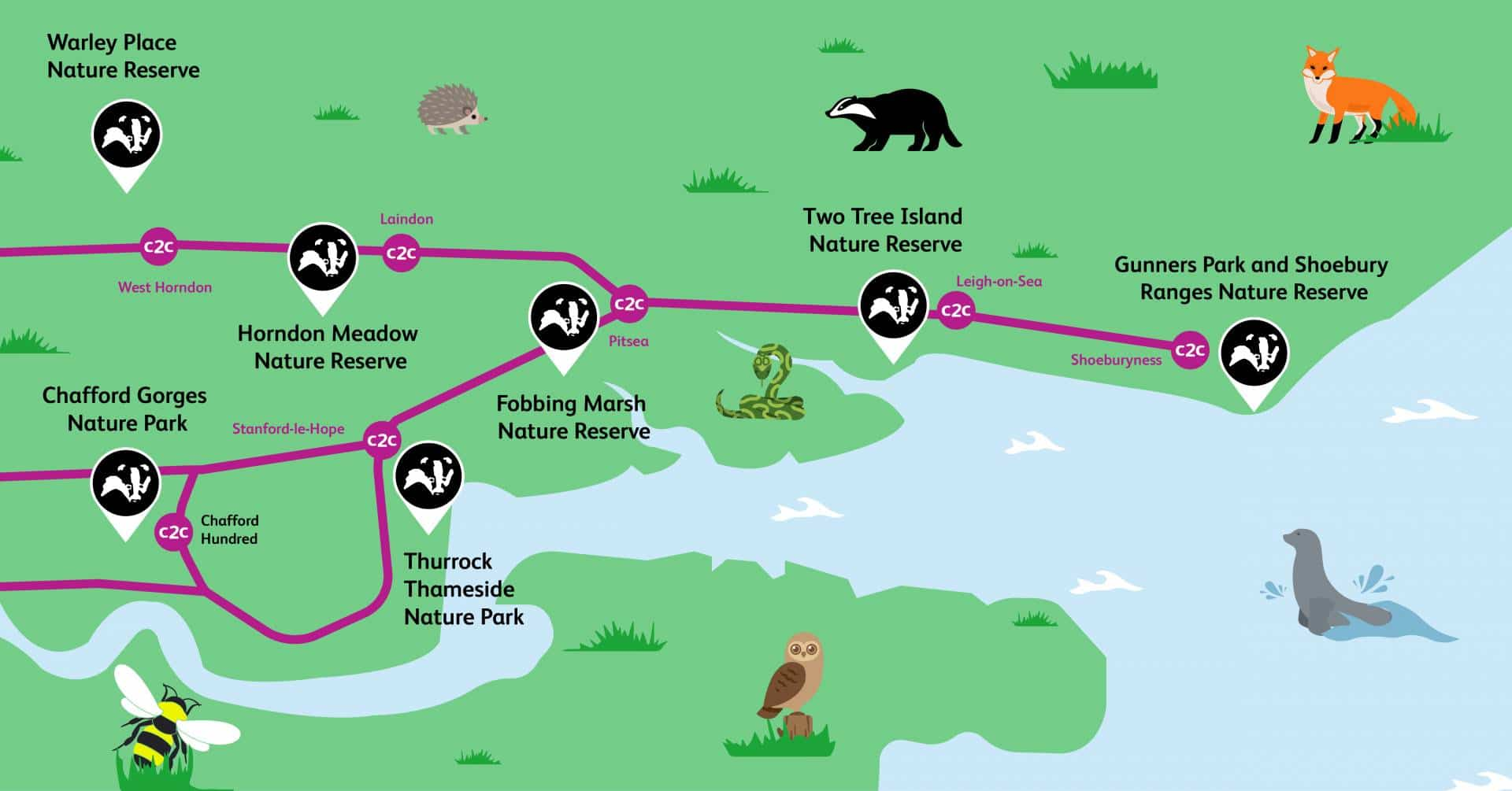 Essex Wildlife Trust spots
